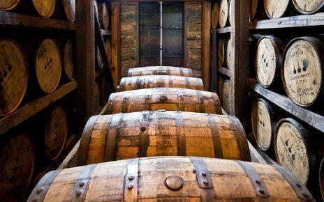 Dobre plony jęczmienia w Szkocji cieszą producentów whisky